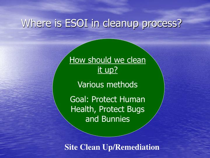 Where is ESOI in cleanup process?