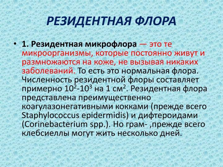 РЕЗИДЕНТНАЯ ФЛОРА
