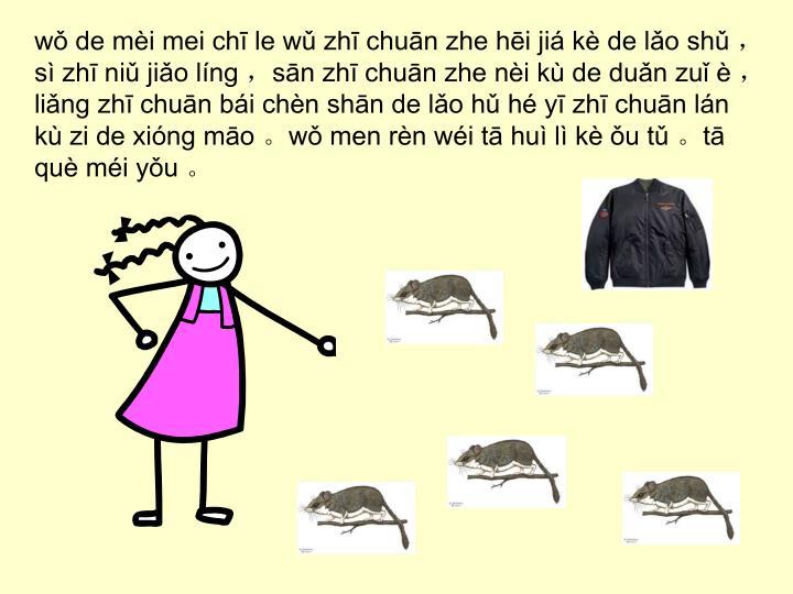 wǒ de mèi mei chī le wǔ zhī chuān zhe hēi jiá kè de lǎo shǔ