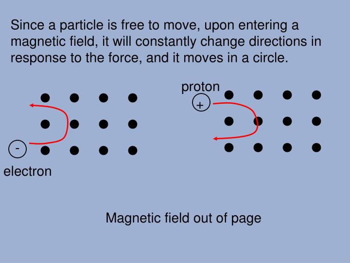 Since a particle is free to move, upon entering a magnetic field, it will constantly change directions in response to the force, and it moves in a circle.