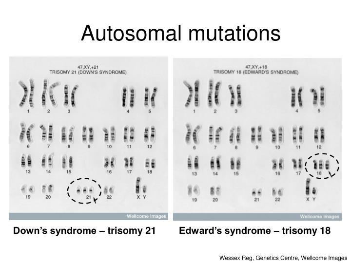 Autosomal mutations
