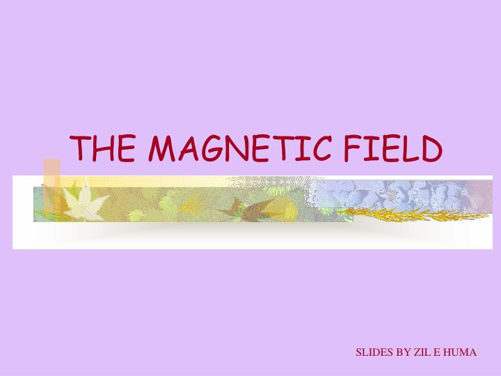 THE MAGNETIC FIELD