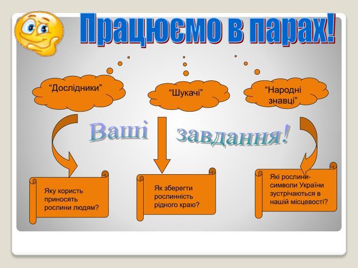 Які рослини-символи України зустрічаються в нашій місцевості?