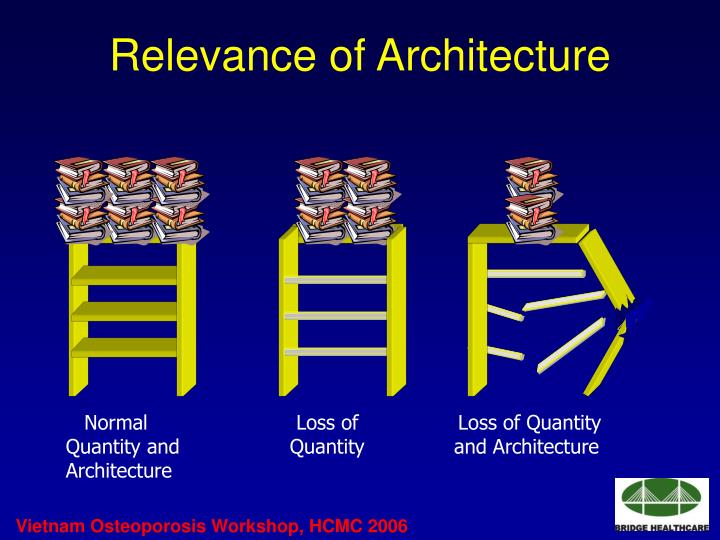 Relevance of Architecture