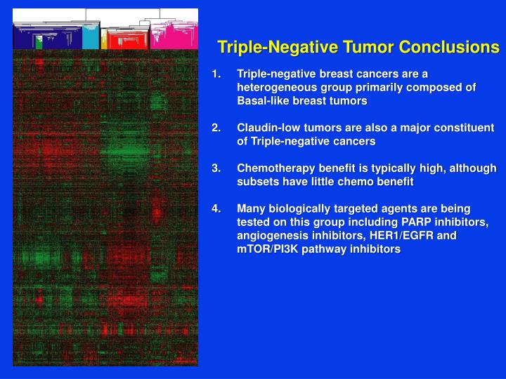 Triple-Negative Tumor Conclusions