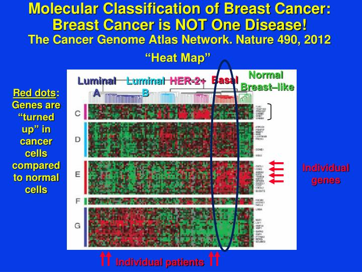 Molecular Classification of Breast Cancer: