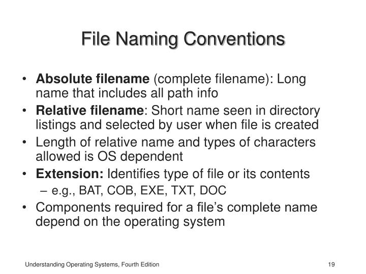 File Naming Conventions