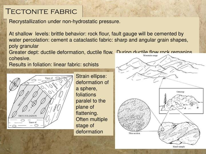 Tectonite fabric