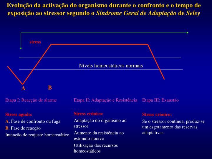 Evolução da activação do organismo durante o confronto e o tempo de exposição ao stressor segundo o