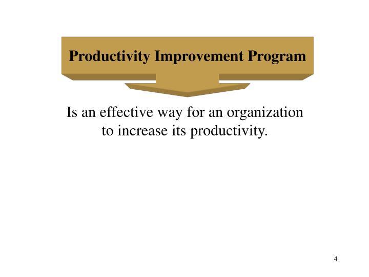 Productivity Improvement Program
