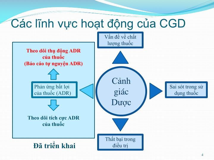 Các lĩnh vực hoạt động của CGD