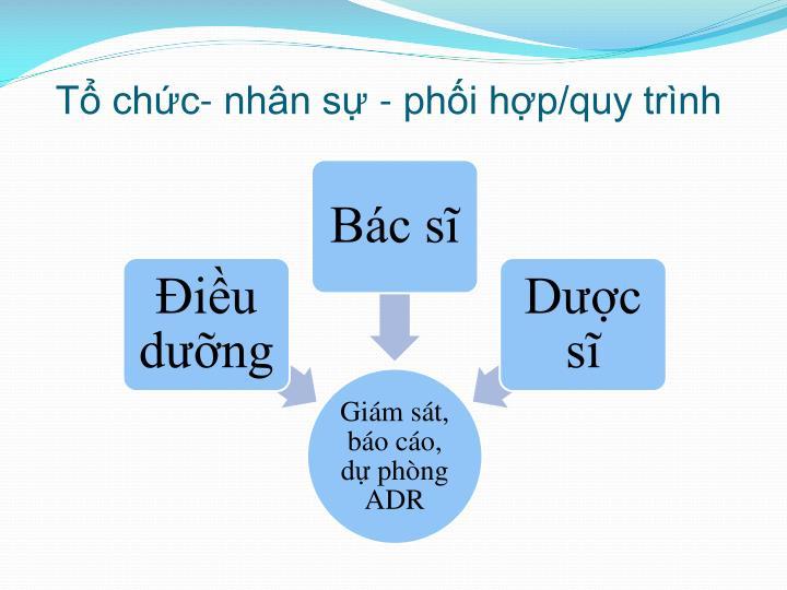 Tổ chức- nhân sự - phối hợp/quy trình