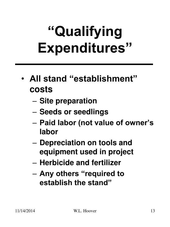 """Qualifying Expenditures"""