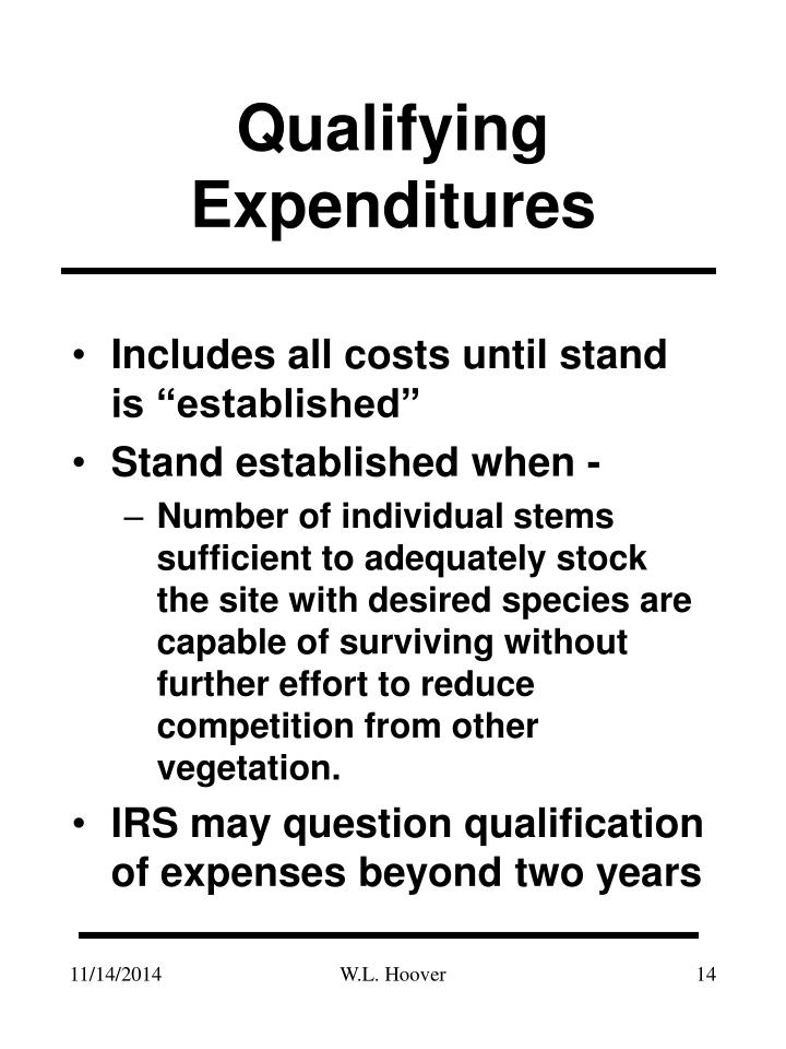 Qualifying Expenditures