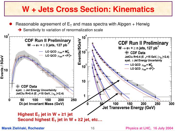 W + Jets Cross Section: Kinematics