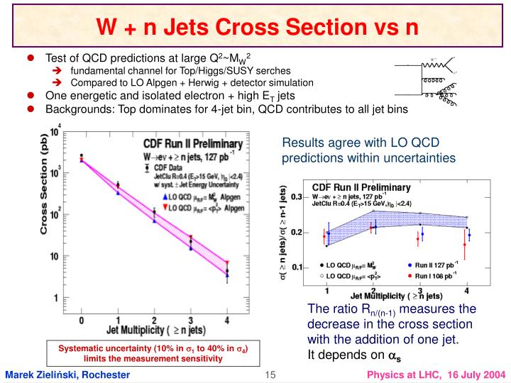 W + n Jets Cross Section vs n