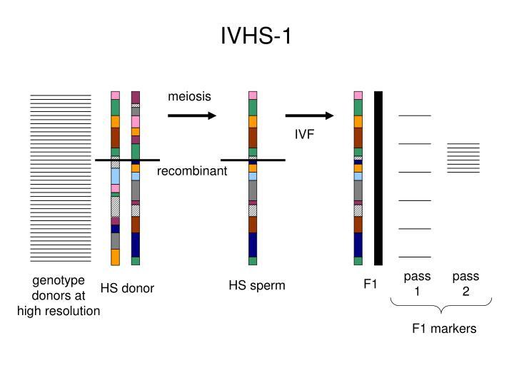 IVHS-1