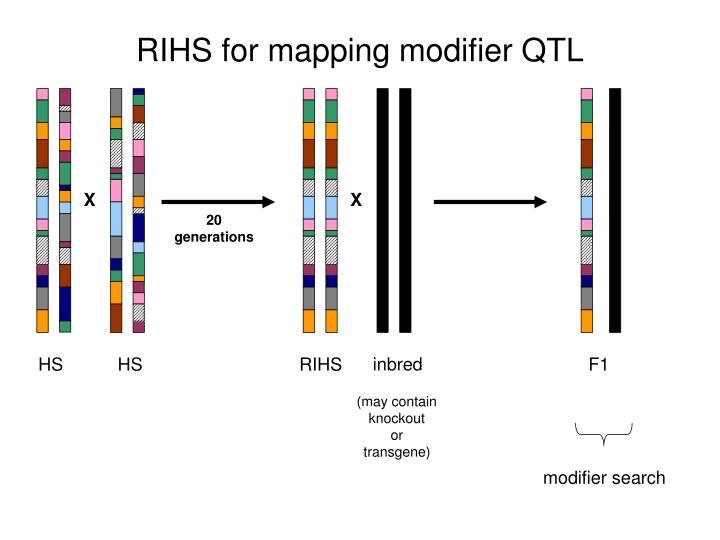 RIHS for mapping modifier QTL