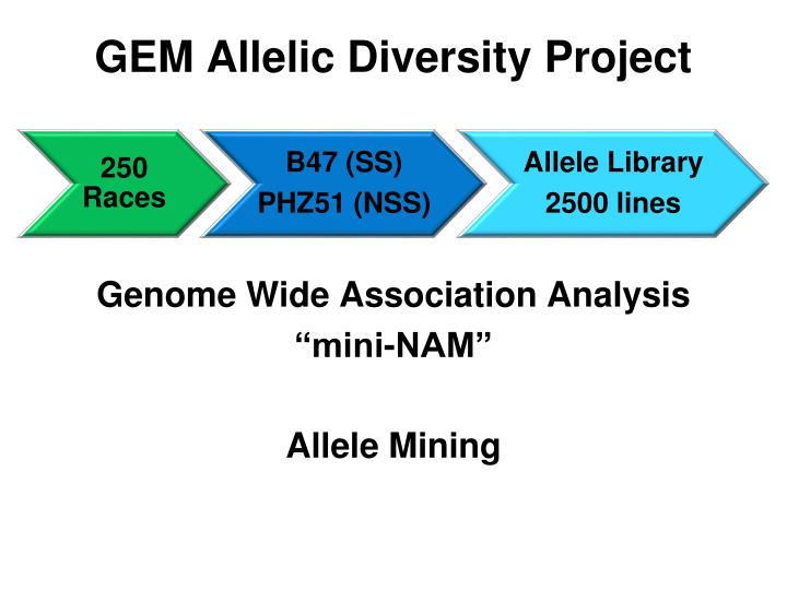 GEM Allelic Diversity Project