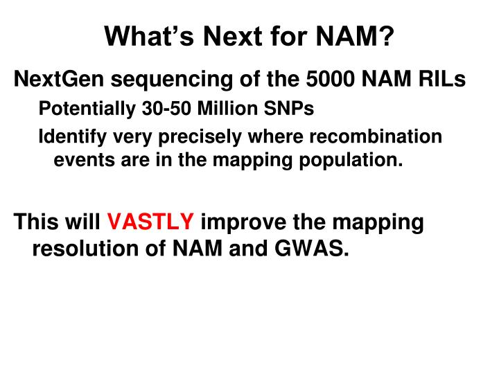 What's Next for NAM?