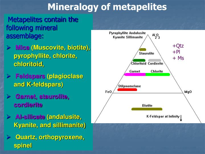 Mineralogy of metapelites