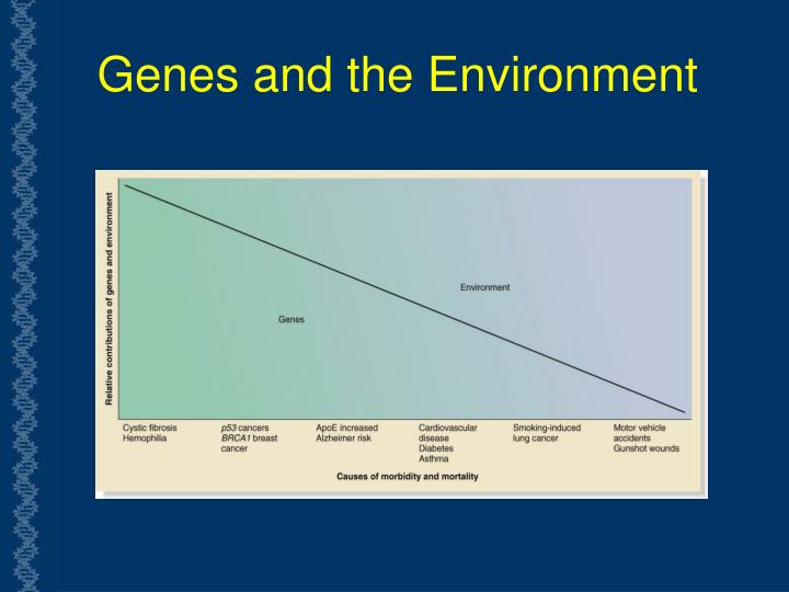 Genes and the Environment