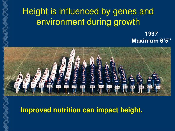 Height is influenced by genes and environment during growth
