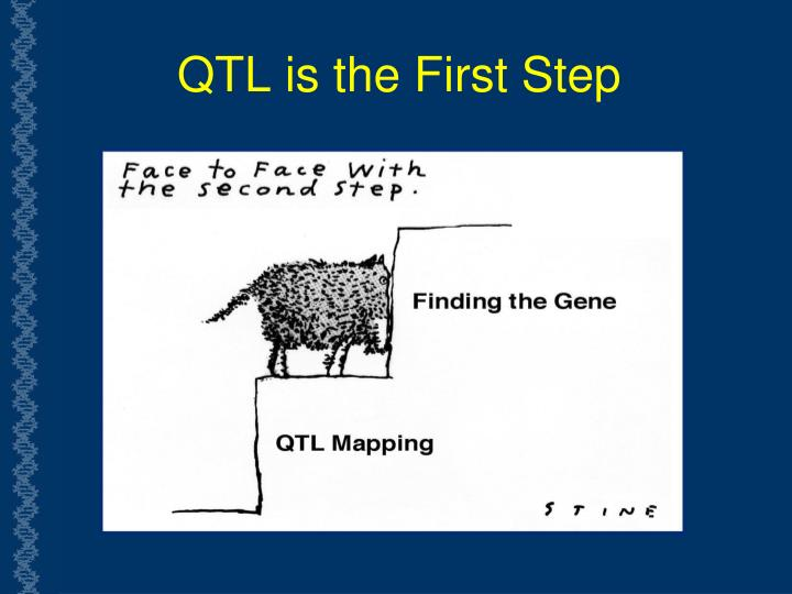 QTL is the First Step