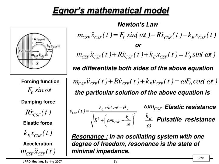 Egnor's mathematical model