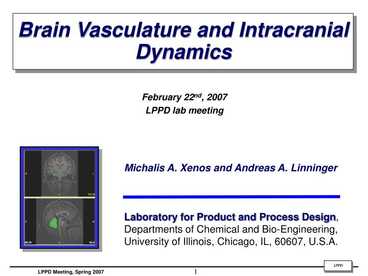 Brain Vasculature and Intracranial Dynamics