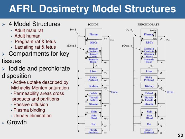 AFRL Dosimetry Model Structures