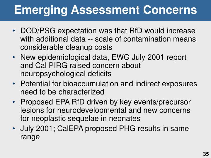 Emerging Assessment Concerns