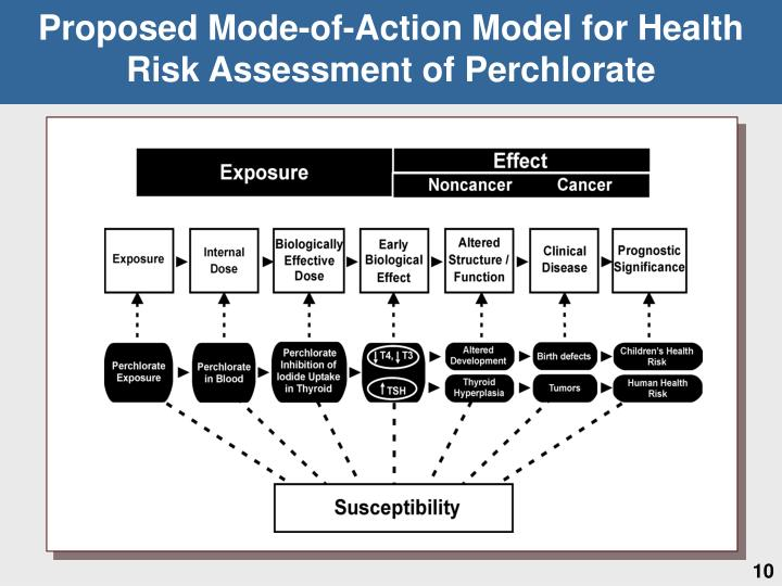 Proposed Mode-of-Action Model for Health Risk Assessment of Perchlorate