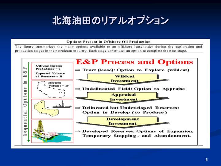 北海油田のリアルオプション