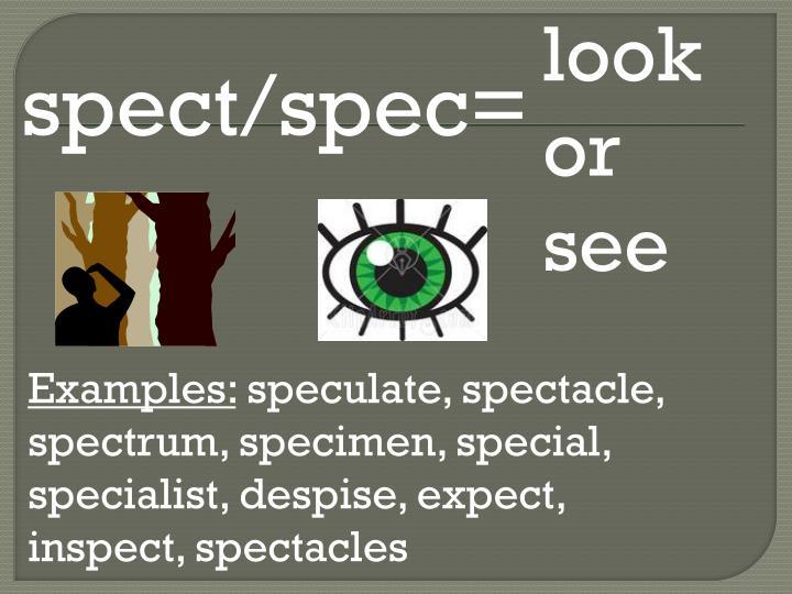 look or see