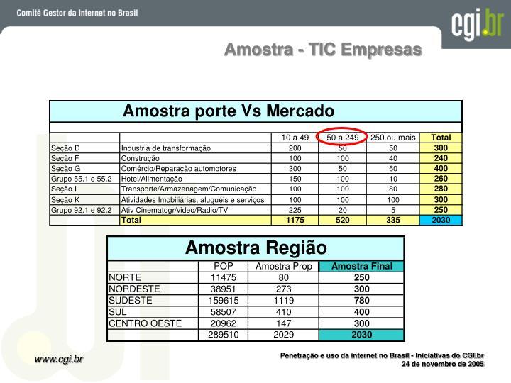 Amostra - TIC Empresas