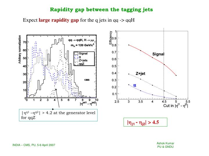 Rapidity gap between the tagging jets