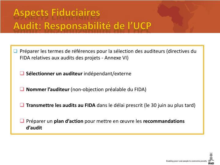 Préparer les termes de références pour la sélection des auditeurs (directives du FIDA relatives aux audits des projets - Annexe VI)