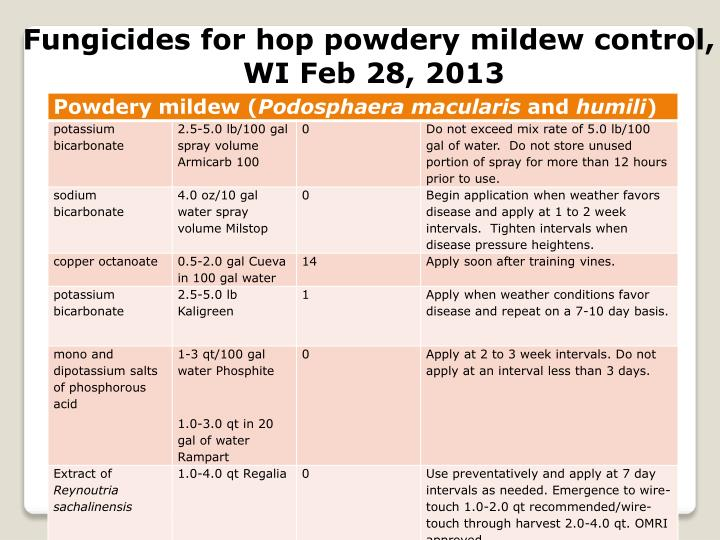 Fungicides for hop powdery mildew control,