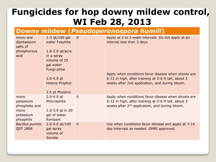Fungicides for hop downy mildew control,