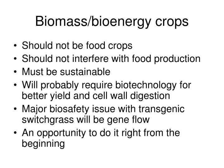 Biomass/bioenergy crops