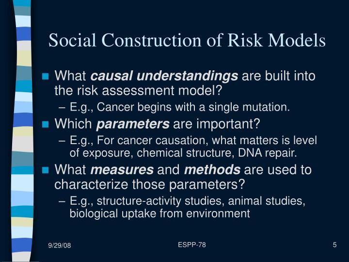 Social Construction of Risk Models
