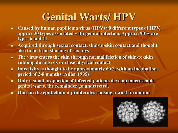 Genital Warts/ HPV