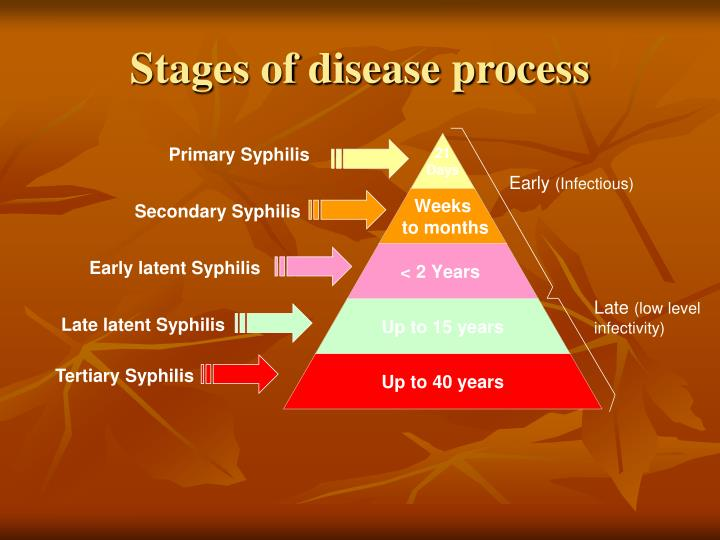 Stages of disease process