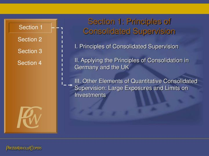 Section 1: Principles of Consolidated Supervision
