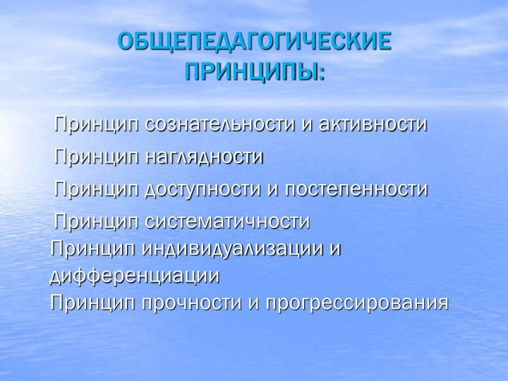 ОБЩЕПЕДАГОГИЧЕСКИЕ                ПРИНЦИПЫ:
