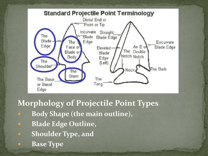Morphology of Projectile Point Types