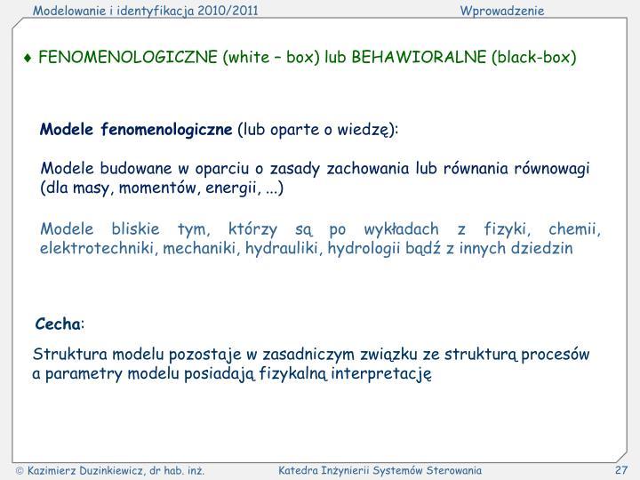  FENOMENOLOGICZNE