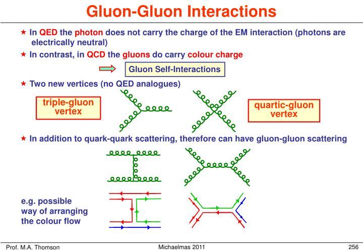 Gluon-Gluon Interactions