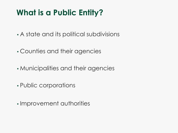 What is a Public Entity?
